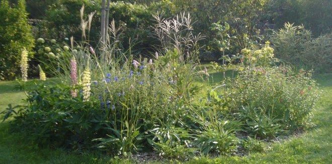 Favoriser la biodiversité au sein du jardin -